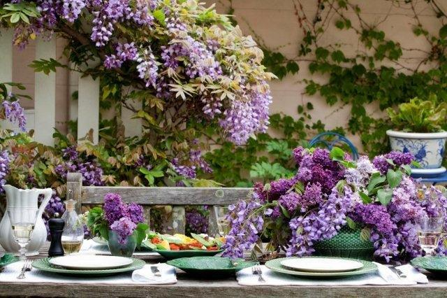3 Wisteria and Lilac