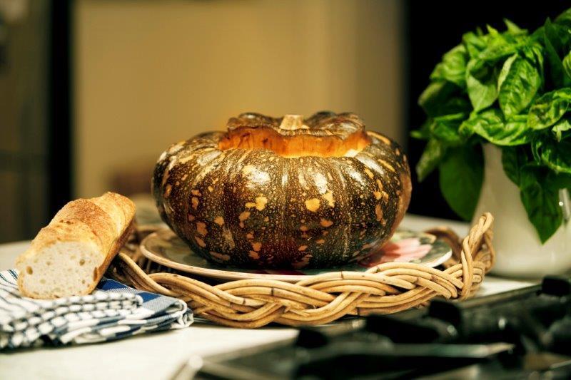 11-Pumpkin hundry1b